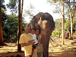Elephant Trekking in Ko Chang
